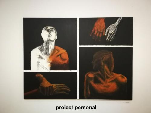 proiect personal2