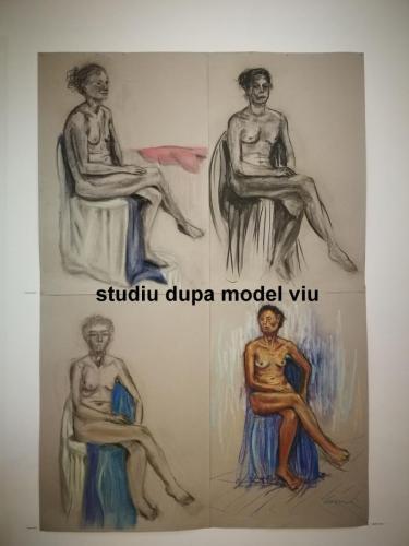 studiu dupa model viu